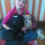 Toliś i psi team:-)